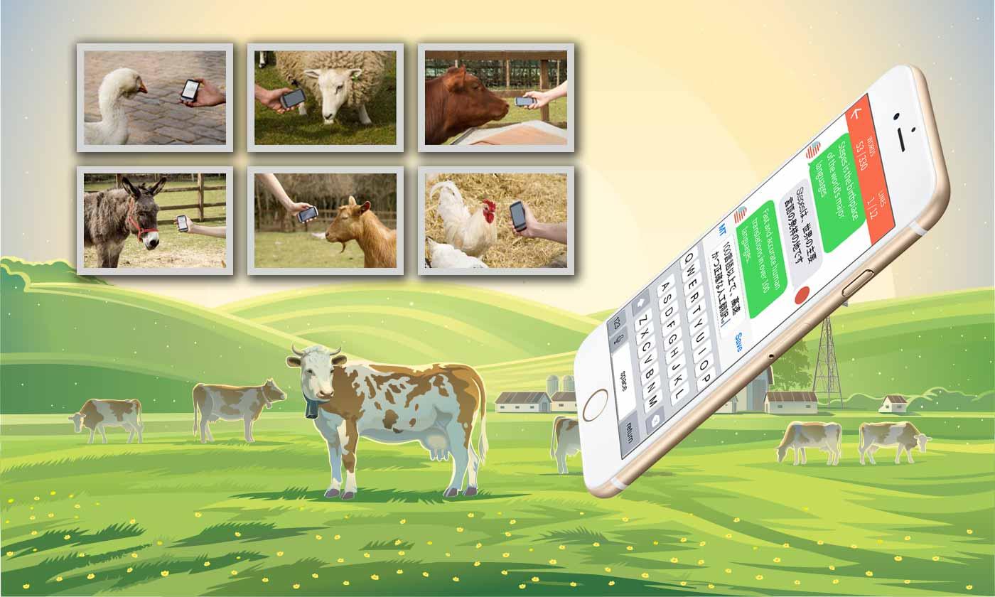 Animal Translate